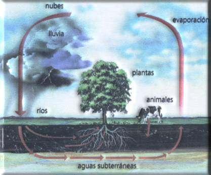 EL AGUA EL AIRE Y LA ATMÓSFERA Ciclo_agua
