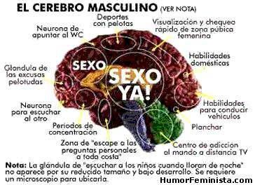Lo que piensan las mujeres