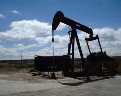 informe sobre yacimientos carbon mineral argentina:
